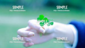 sample_61