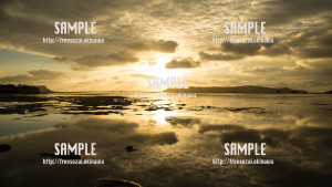 sample_65