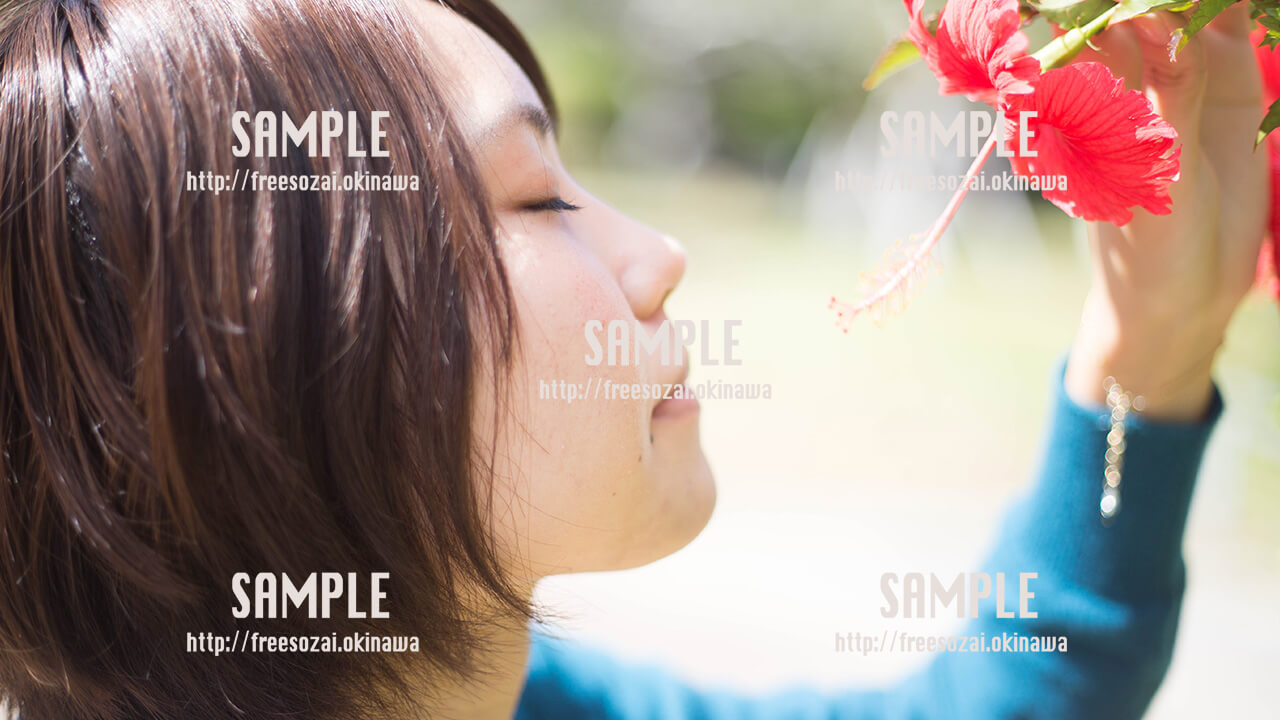 【緑ヶ丘公園】ハイビスカスの匂いをかぐ美少女 写真素材