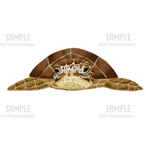 ウミガメのイラスト素材
