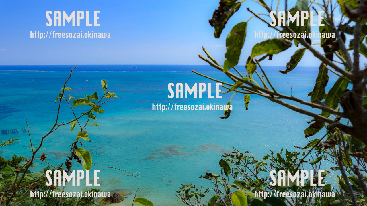 【沖縄】草木から見える青い海 写真素材