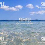 【沖縄】貝殻と砂浜 写真素材