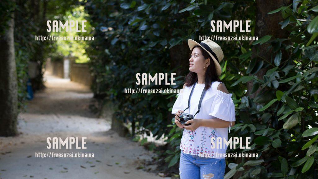 フクギ並木でカメラを持つ女の子 写真素材