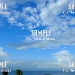OISTから見える海 写真素材