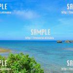 透き通った海とハイビスカス 写真素材