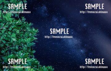 きれいな星空と木 写真素材