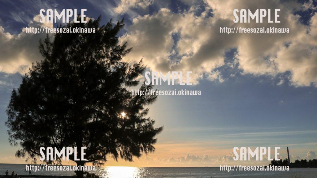 木の間から見える夕日 写真素材
