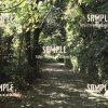 【末吉公園】緑のトンネル  写真素材